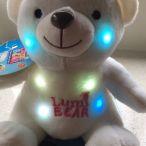 Lumi bear switch-adapted toy